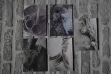 Set van 5 sobere kaarten 3