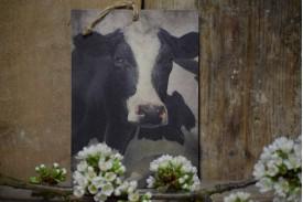 Deco bordje koe